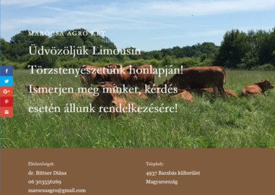 Honlapkészítés a Marócsa Agro Kft. részére